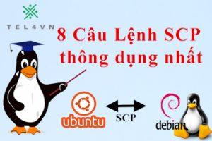 cau-lenh-scp-thong-dung