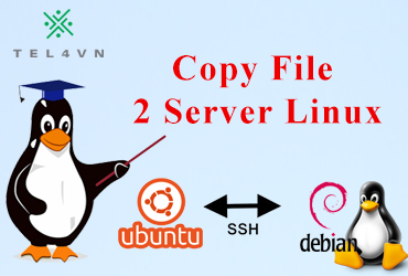 copy file giữa 2 server Linux