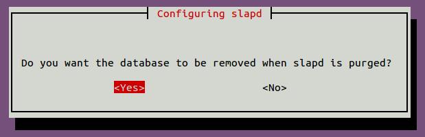 confirm-option